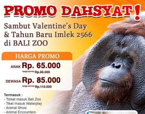 Promo Bali Zoo nikmati diskon tiket masuk untuk anak maupun dewasa