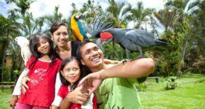 Harga Tiket Masuk - HTM Bali Bird Park