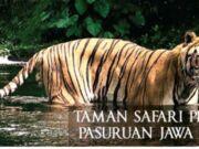 Taman Safari Prigen Pasuruan Jawa Timur