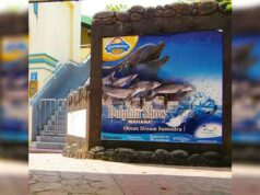 Promo Ocean Dream Samudra Ancol