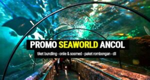 promo seaworld ancol