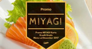 Promo Miyagi