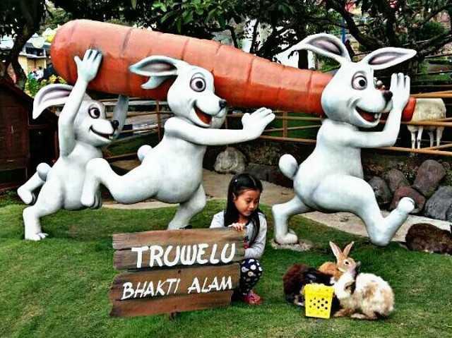 memberi makan kelinci di agrowisata bhakti alam