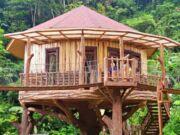 Taman Safari Lodge Cisarua