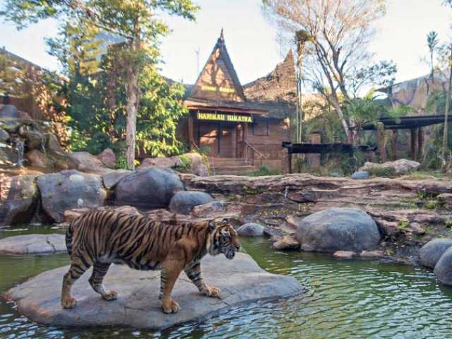 Batu Secret Zoo Tiket 10 Zona September 2020 Travelspromo