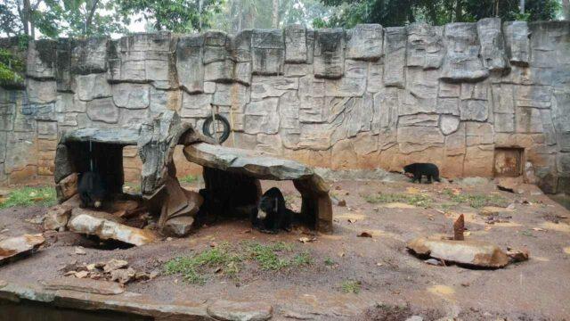 area taman satwa