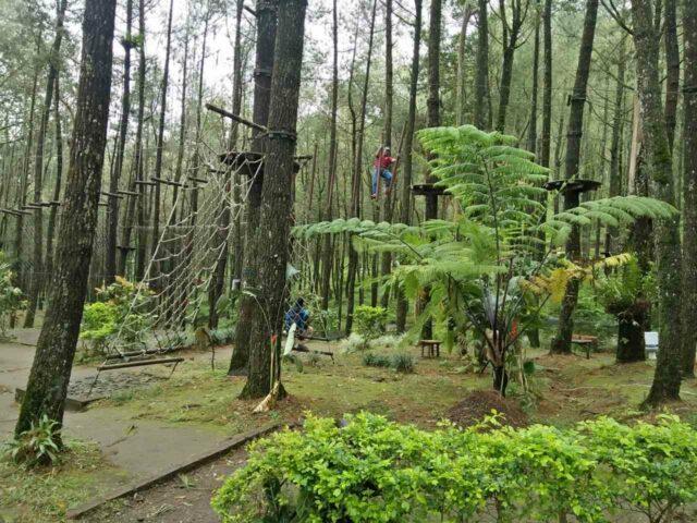 Flying fox kopeng adventure park Semarang