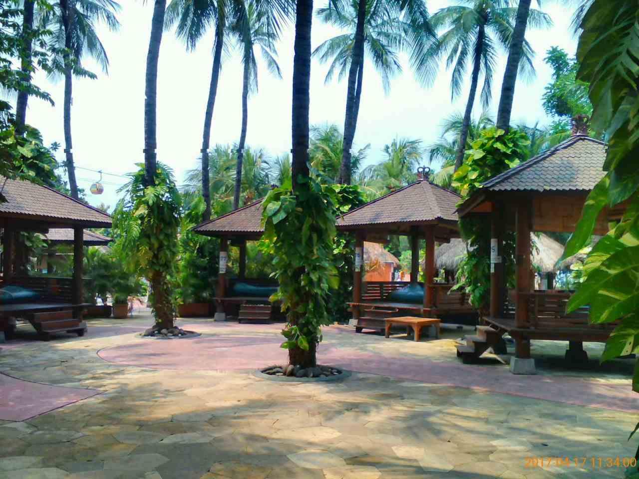 area taman yang teduh dengan pohon kelapa