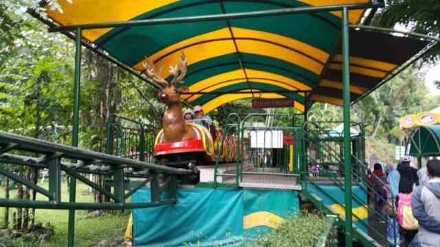 kereta rusa mini taman safari prigen