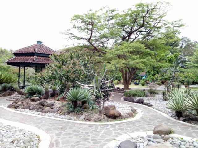 taman wisata dan edukasi kebun raya purwodadi