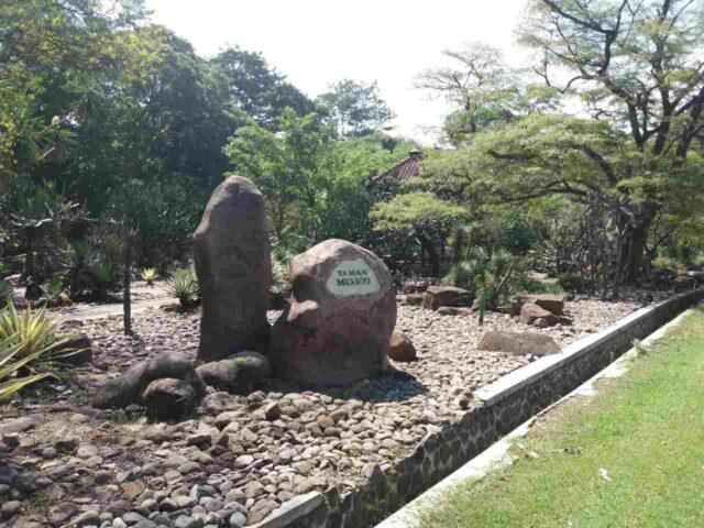 taman mexico dengan tumbuhan khas meksiko