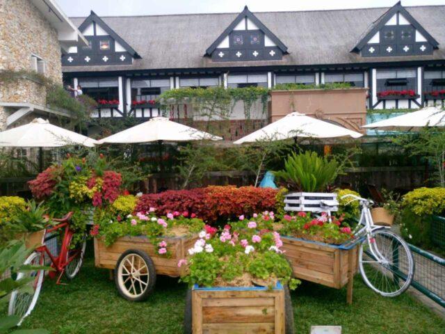 taman bungan farm house lembang