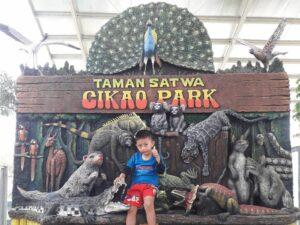 taman satwa yang menampilkan berbagai jenis hewan