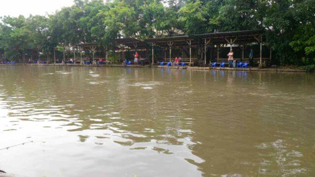 kolam pemancingan depok