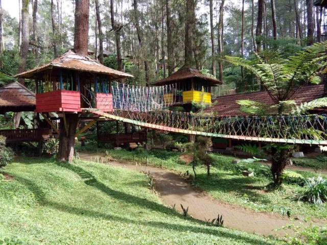 wahana jembatan tali outdoor