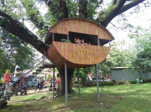 rumah pohon yang unik