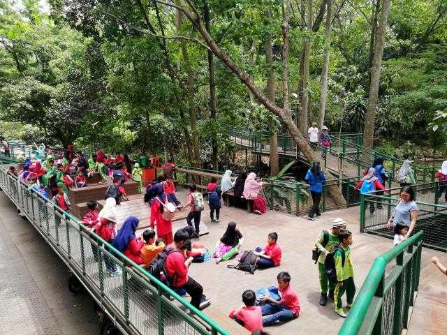 piknik di forest walk babakan siliwangi