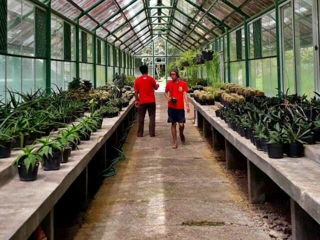 pelatihan tanaman kebun raya