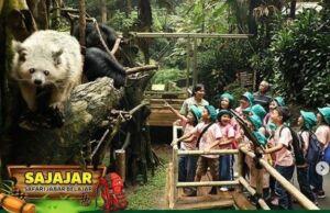 Promo Taman Safari Cisarua