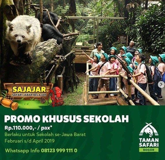 Promo Taman Safari Bogor Diskon Rp85.000