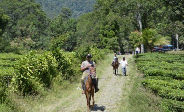 Berkuda sesuai rute yang tersedia
