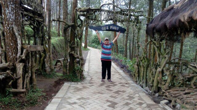 Hijaunya Goa Pinus