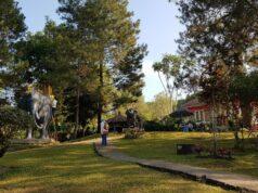 Pemandangan hijau dan asri di Taman Wisata Kaliurang
