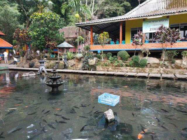 Rumah makan di tepi kolam