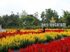 Taman Bunga di Puri Mataram