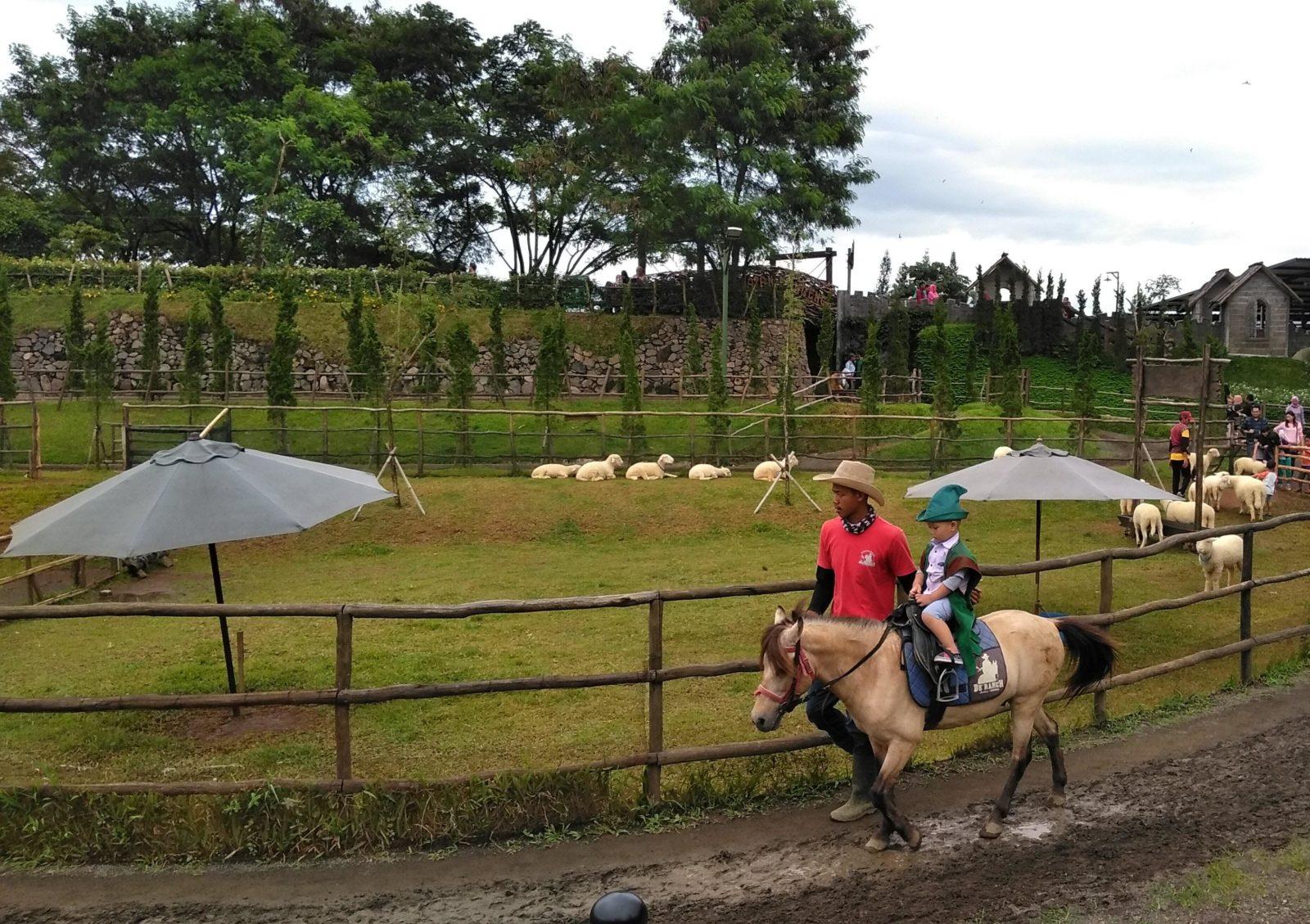 menunggang kuda di di ranch cisarua puncak e1551845530179 - Tempat Wisata Terbaik untuk Liburan Keluarga Di Bogor