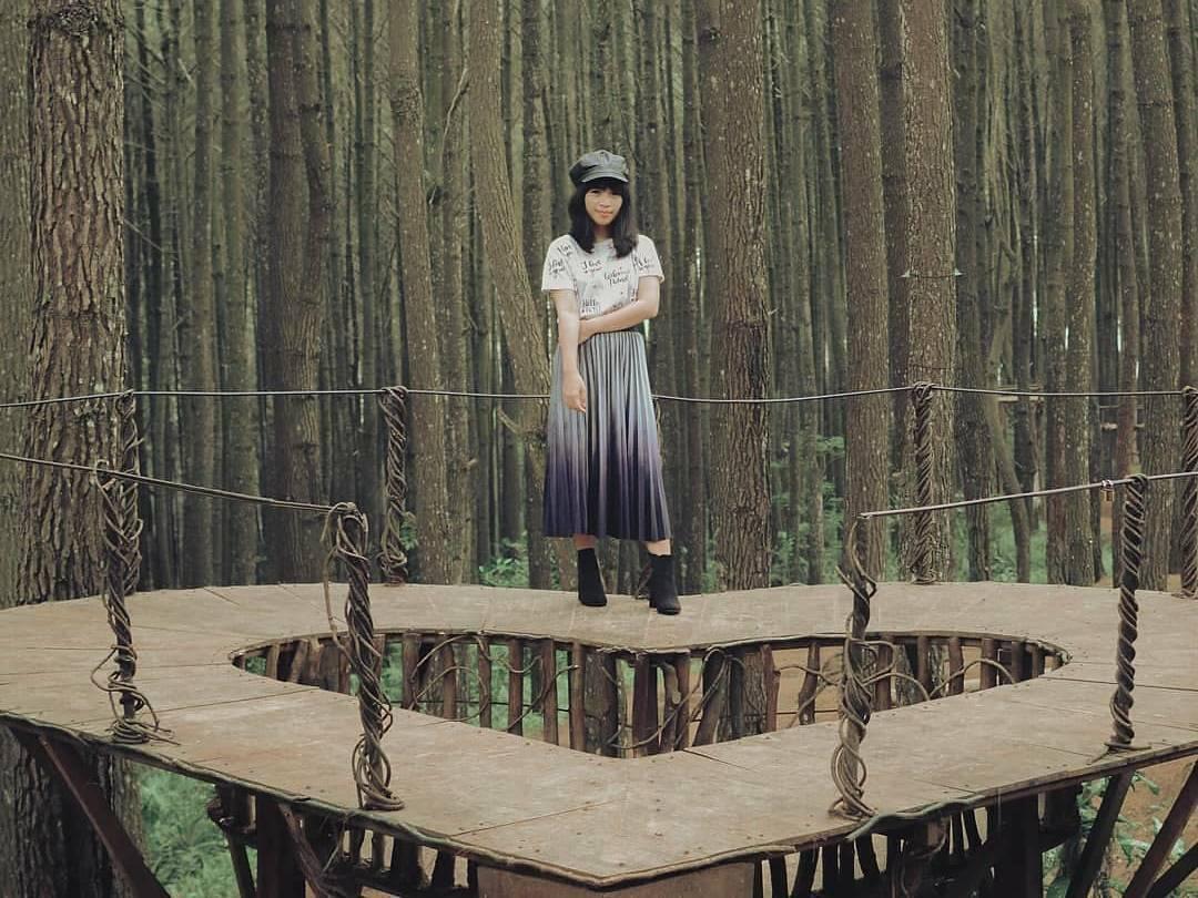 Hutan Pinus Mangunan Yogya Tiket Aktivitas April 2021 Travelspromo