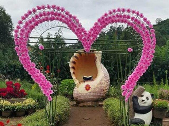 Wahana bunga cinta