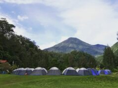 Mandalawangi Cibodas Camping Ground