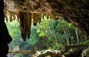 stalaktit di Goa Pindul