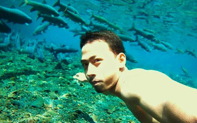 berenang bersama ikan dewa