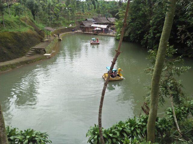 Berkeliling Danau dengan Perahu Angsa