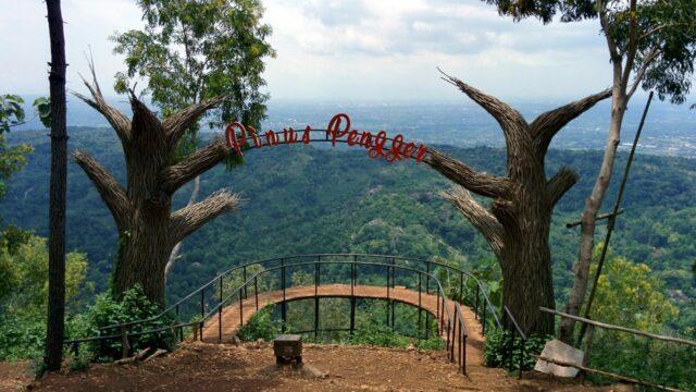 kawasan wisata hutan pinus pengger