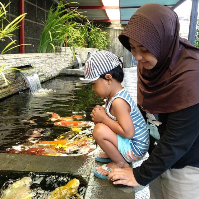 Kolam Ikan Koi di Fish Garden Blitar