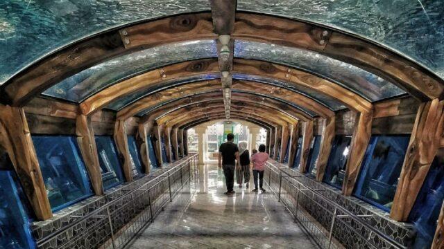 lorong koleksi ikan di wahana planet aquarium toyoshuka