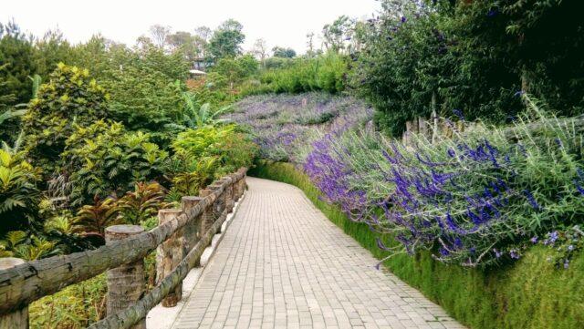Sidewalk di Rainbow Garden Lembang