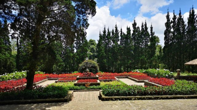 area taman bunga
