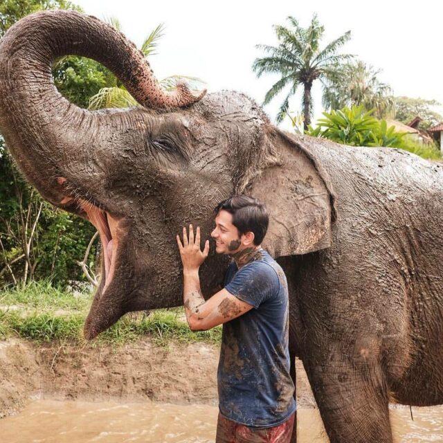 Elephant Mud Fun