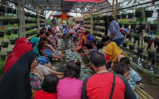 wahana aktivitas kolam terapi ikan