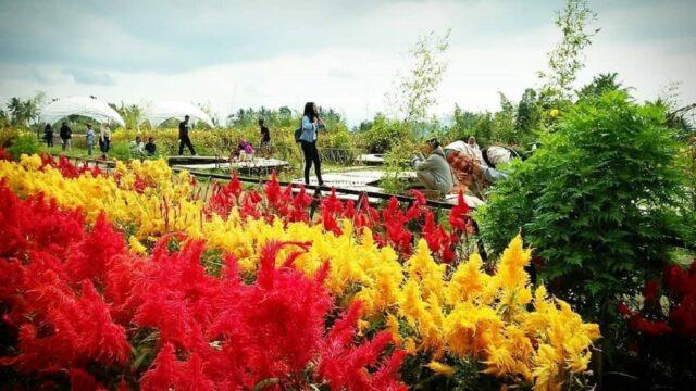 taman bunga di area taman