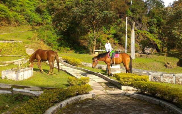 berkeliling naik kuda di kawasan candi
