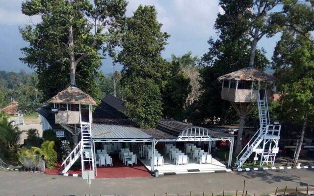 Dua Musola yang dibangun di pohon Durian