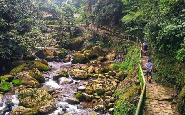 Jalur treking berupa tangga bebatuan dengan pemandangan pepohonan rimbun dan tepian sungai