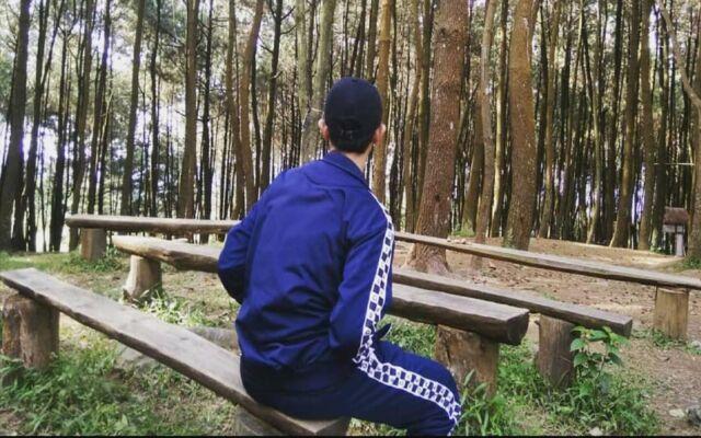 Kawasan pepohonan pinus di sekitar area air terjun menjadi spot foto yang menarik