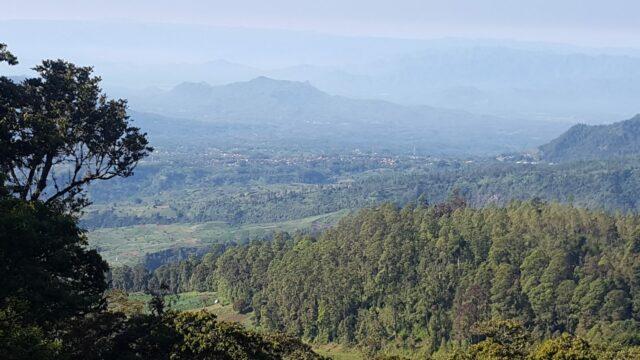 Pemandangan Perbukitan dan hutan di sekitar area