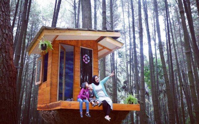 Rumah Pohon ini merupakan salah satu spot foto menarik